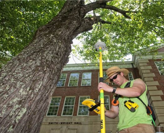 Arborist Consultations-Riverside Tree Trimming and Stump Grinding Services-We Offer Tree Trimming Services, Tree Removal, Tree Pruning, Tree Cutting, Residential and Commercial Tree Trimming Services, Storm Damage, Emergency Tree Removal, Land Clearing, Tree Companies, Tree Care Service, Stump Grinding, and we're the Best Tree Trimming Company Near You Guaranteed!