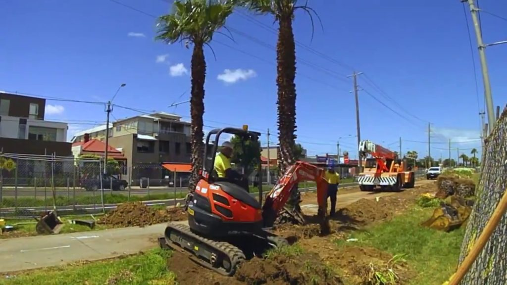 Palm Tree Removal-Riverside Tree Trimming and Stump Grinding Services-We Offer Tree Trimming Services, Tree Removal, Tree Pruning, Tree Cutting, Residential and Commercial Tree Trimming Services, Storm Damage, Emergency Tree Removal, Land Clearing, Tree Companies, Tree Care Service, Stump Grinding, and we're the Best Tree Trimming Company Near You Guaranteed!