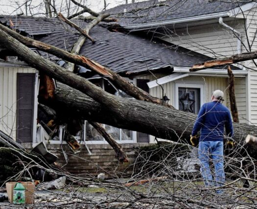 Storm Damage-Riverside Tree Trimming and Stump Grinding Services-We Offer Tree Trimming Services, Tree Removal, Tree Pruning, Tree Cutting, Residential and Commercial Tree Trimming Services, Storm Damage, Emergency Tree Removal, Land Clearing, Tree Companies, Tree Care Service, Stump Grinding, and we're the Best Tree Trimming Company Near You Guaranteed!