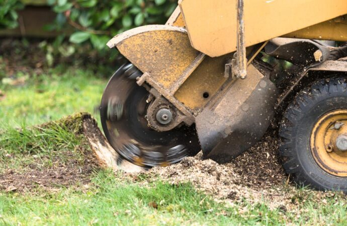Stump Grinding-Riverside Tree Trimming and Stump Grinding Services-We Offer Tree Trimming Services, Tree Removal, Tree Pruning, Tree Cutting, Residential and Commercial Tree Trimming Services, Storm Damage, Emergency Tree Removal, Land Clearing, Tree Companies, Tree Care Service, Stump Grinding, and we're the Best Tree Trimming Company Near You Guaranteed!