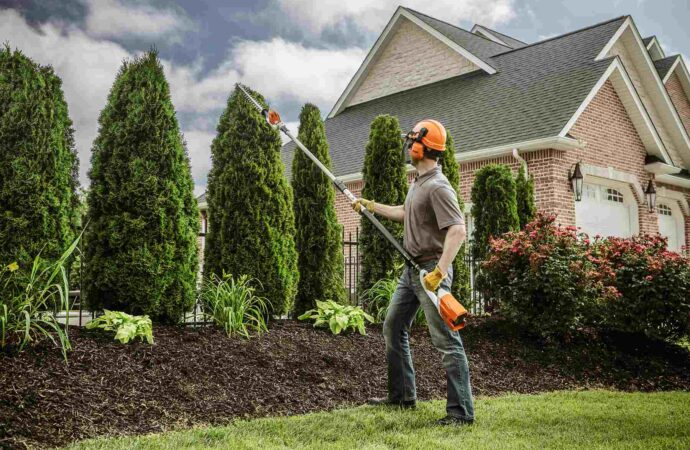 Grand Terrace-Riverside Tree Trimming and Stump Grinding Services-We Offer Tree Trimming Services, Tree Removal, Tree Pruning, Tree Cutting, Residential and Commercial Tree Trimming Services, Storm Damage, Emergency Tree Removal, Land Clearing, Tree Companies, Tree Care Service, Stump Grinding, and we're the Best Tree Trimming Company Near You Guaranteed!